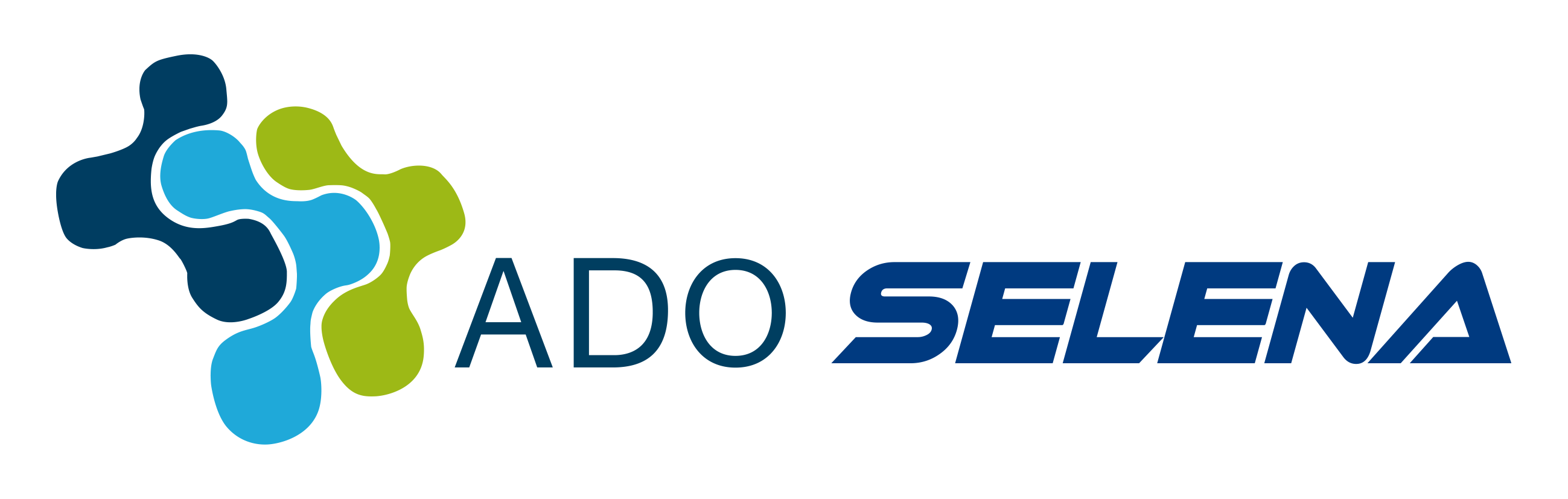 Ado_Selena_logo